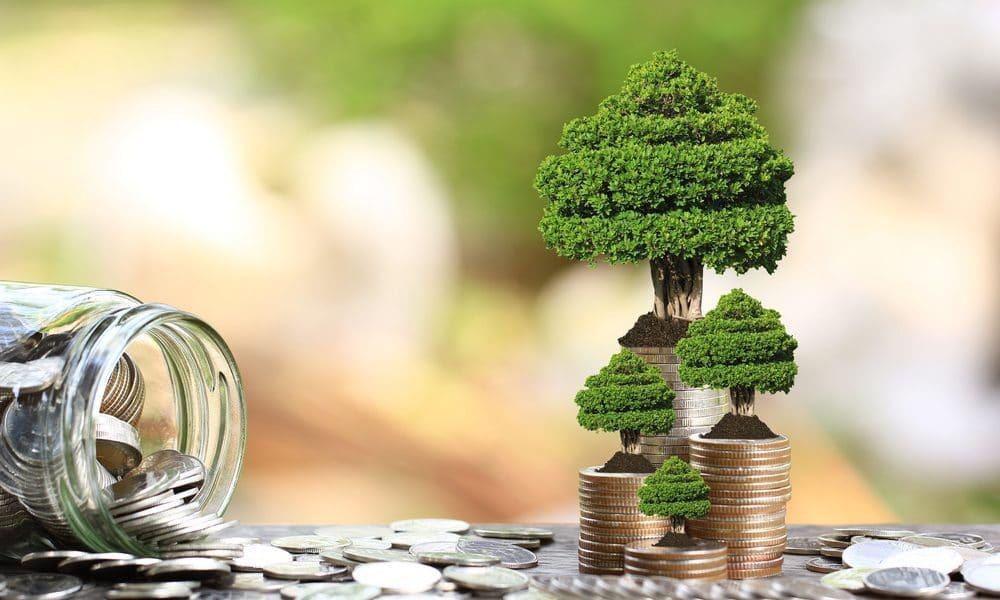 Green Lending