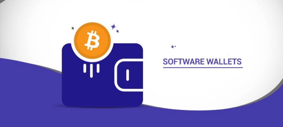 software wallet to store crypto